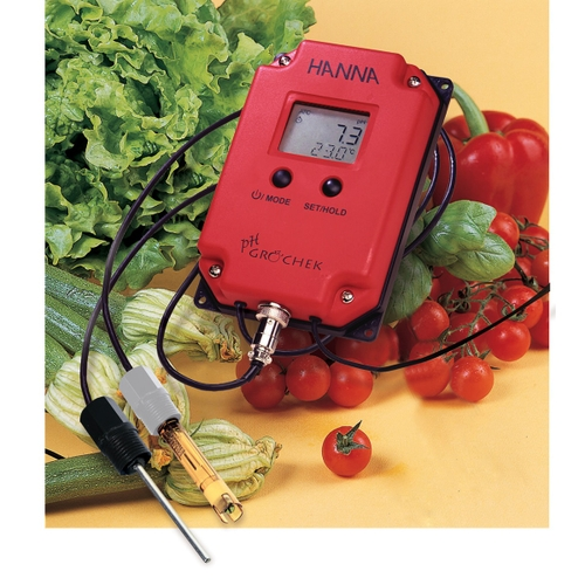 Indicatore di pH e temperatura a microprocessore, completo di elettrodo pH HI 1293D e sonda di temperatura fissa