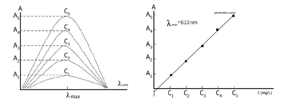 Grafici Assorbanza