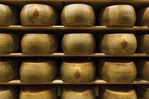pHmetri per l'analisi del formaggio