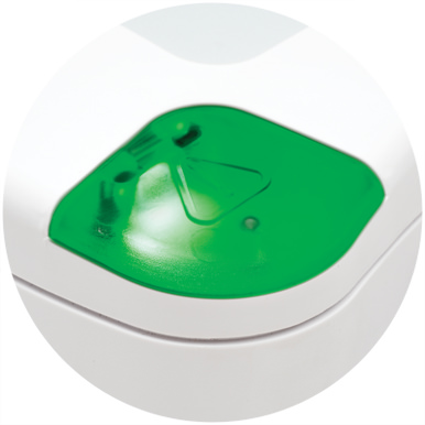 Verde fisso